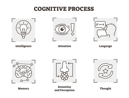 Vector illustration of cognitive process. Explained types with scheme of intelligence, attention, language, memory, thought, sensation and perception types. Psychology basics in black white diagram.