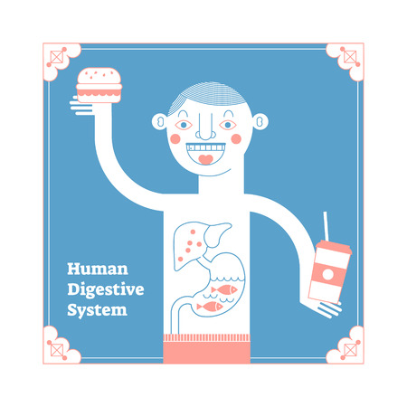 Stylized Human Digestive System, framed modern anatomical vector illustration, conceptual decorative style art poster with happy outline male having meal and digestive tract cross section. Иллюстрация