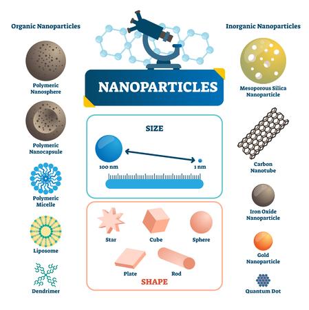 Nanopartículas etiquetadas infografía. Ilustración de vector de elemento microscópico. Ejemplo de tecnología polimérica orgánica o inorgánica, cápsula, micela, cuántica y de carbono