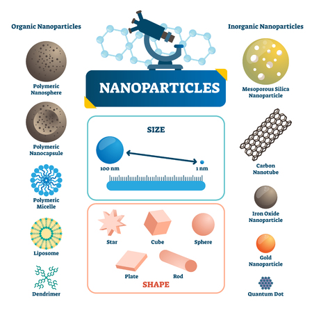 Nanoparticles labeled infographic. Microscopic element vector illustration. Organic or inorganic polymeric sphere, capsule, micelle, quantum and carbon technology example  イラスト・ベクター素材