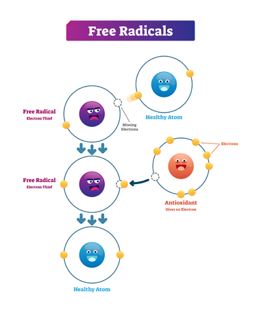 Illustrazione di vettore di spiegazione dei radicali liberi, antiossidante e atomo sano. Donazione di elettroni instabile e altamente reattiva da molecole come ossidanti o riducenti.