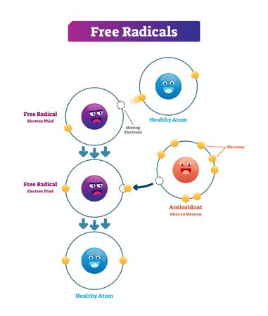 Ilustración de vector de explicación de radicales libres, antioxidantes y átomos saludables. Donación de electrones inestables y altamente reactivos a partir de moléculas como oxidantes o reductores.
