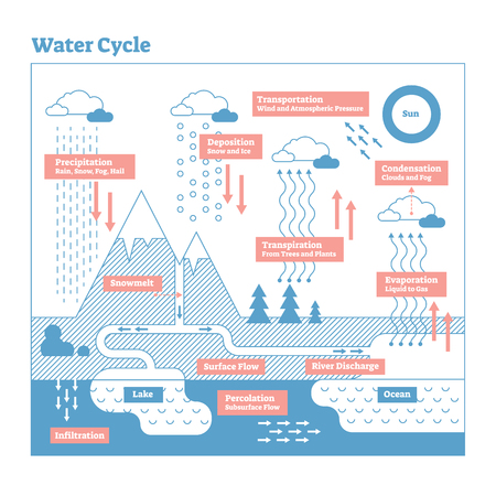 Water Cycle vector illustration diagram. Evaporation to condensation, transportation, precipitation, infiltration and percolation. Ecosystem scheme with ocean, clouds, rain, snow, lakes and rivers.
