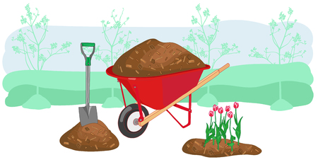 Mulch gardening concept vector illustration with wheelbarrow, shovel and tulips. Agriculture countryside outdoor seasonal work equipment.