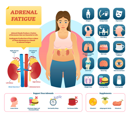 Adrenal fatigue vector illustration. List of glands disease symptoms like fatigue, depression, anxiety, hair loss, craving carbs and salt. Adrenal support and supplements. Low quality life illness.