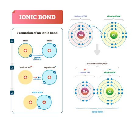 Ionenbindungsvektorillustration. Beschriftetes Diagramm mit Erklärung der Bildung. Art der chemischen Bindung, die eine elektrostatische Anziehung zwischen entgegengesetzt geladenen Teilchen und eine Atomwechselwirkung beinhaltet.