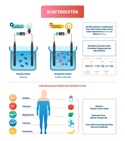 Electrolytes test vector illustration. Isolated Body fluid labeled diagram example. Ethanol and sodium chloride science test. Scheme with substance that conducts electricity when dissolved or molten. Archivio Fotografico - 118163359