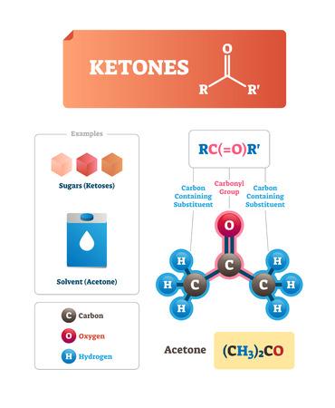 Illustration vectorielle de cétones. Sucres et solvant composé organique chimique. Exemple de cétoses et d'acétone industrielle. Programme éducatif étiqueté avec des atomes physiques isolés et un titre de formule de particules.