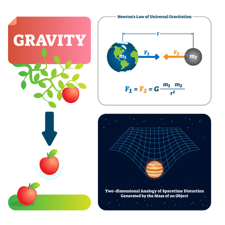 Gravity vector illustration. Explained natural force to objects with mass. Basics of universe physics. Gravitation gives weight to physical spacetime. Newtons law formula, universe and apple example.