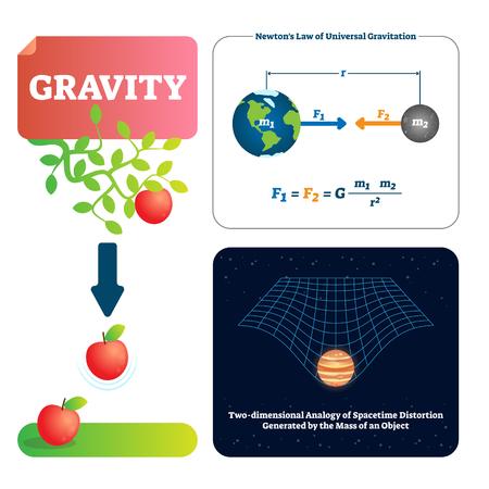 Ilustración de vector de gravedad. Explicó la fuerza natural a los objetos con masa. Conceptos básicos de la física del universo. La gravitación le da peso al espacio-tiempo físico. La fórmula de la ley de Newton, el universo y el ejemplo de la manzana. Ilustración de vector