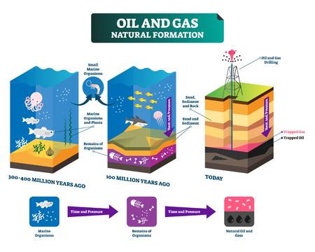 L'illustration vectorielle étiquetée de la formation naturelle du pétrole et du gaz explique le schéma. Chronologie d'il y a des millions d'années à aujourd'hui. Processus de technologie de forage éducatif pour obtenir de l'énergie fossile. Infographie des ressources.