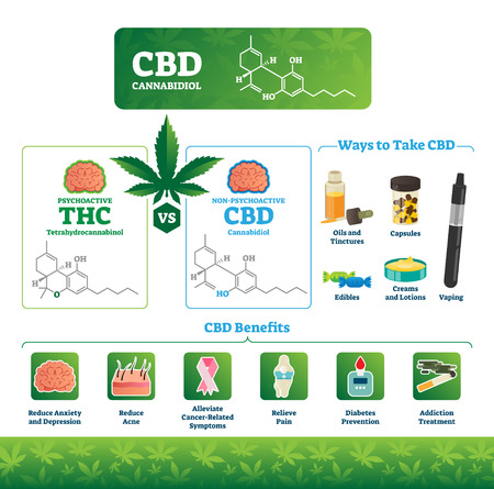 CBD vector illustration. Labeled medical THC cannabis benefits infographics. Psychoactive and healthy illness treatment canabidiol comparison diagram. Chemical structure formula, intake ways and uses. 向量圖像