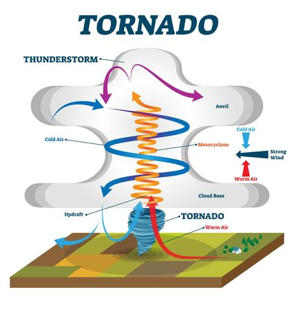 Tornado vector illustration. Labeled educational wind vortex explanation. Weather hurricane scheme with anvil, mesocyclone and cloud base. Updraft air motion that causes dangerous spiral whirlwinds. Reklamní fotografie - 127452785