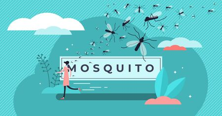 Mosquito vector illustration. Flat tiny insects bite prevention persons concept. Wildlife epidemic gnat, fly or termite control with runaway. Abstract annoying tropical problem banner and word text.