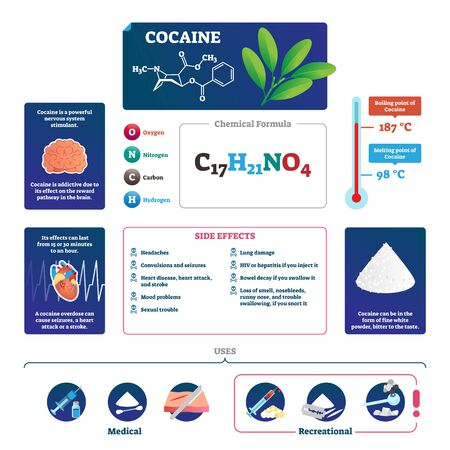 Cocaine vector illustration. Educational labeled drug description scheme. Infographic with explained addiction side effects, uses, chemical formula, overdose danger and feeling anatomical explanation.