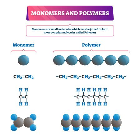 Monomers and polymers vector illustration. Labeled chemical educational scheme with both examples. Complex molecules structure formula and organic synthesis. Microscopic atom bonding closeup diagram.