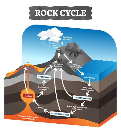 Rock cycle vector illustration. Educational labeled geology process scheme. Diagram with sedimentary, metamorphic and igneous formation. Pressure force impact on tectonic plates. Ground erosion layers
