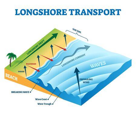 Ilustración de vector de transporte de deriva costera. Esquema educativo etiquetado sobre la evolución del océano y la playa del mar con zona de swash, backwash y surf. Explicación del fenómeno de movimiento de partículas naturales en la costa.