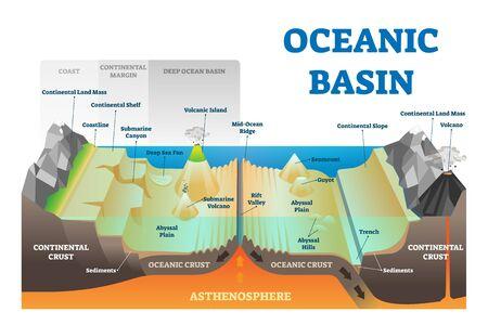 Ilustración de vector de estructura de cuenca oceánica. Esquema de nivel subacuático educativo de geografía etiquetado con costa, margen continental y corteza. Explicación geológica con elementos atlánticos o pacíficos profundos
