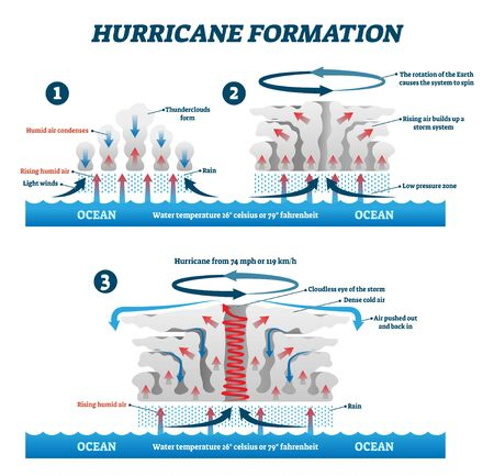 Hurricane formation labeled vector illustration. Educational wind storm air movement explanation scheme. Diagram with natural phenomena steps. Meteorological humid air rapid condensation rise effect.