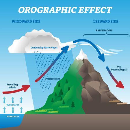 Illustrazione vettoriale di effetto orografico. Schema di movimento del sistema meteorologico etichettato. Diagramma didattico con lato sopravvento e sottovento. Venti prevalenti, precipitazioni e fenomeni di condensazione del vapore acqueo. Vettoriali