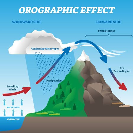 Orographic effect vector illustration. Labeled weather system movement scheme. Educational diagram with windward and leeward side. Prevailing winds, precipitation and condensing water vapor phenomena. 向量圖像