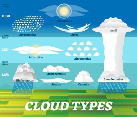 Cloud types vector illustration. Labeled air scheme with altitude division. Nature weather meteorological and geographical info graphic with stratus, cumulus, anvil