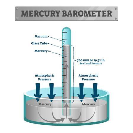 Illustrazione di vettore del barometro di mercurio. Strumento a pressione atmosferica etichettato. Strumento di misurazione del tempo della superficie terrestre con tubo di vetro e vuoto. Indicazione meteorologica per la previsione delle previsioni. Vettoriali
