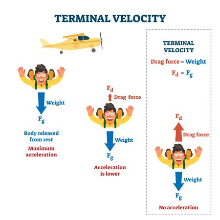 Terminal velocity vector illustration. Labeled falling speed explanation. Mathematical skydiving formula law with weight, acceleration and drag force in mid air jump. Motion measurement infographic.