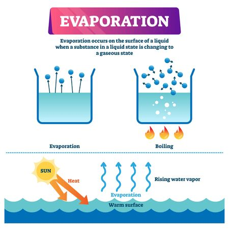 Evaporation vector illustration. Labeled liquid surface substance change to gas state scheme. Educational explanation diagram with nature phenomenon when sun heats warm water and triggers rising vapor Stock Vector - 137088903