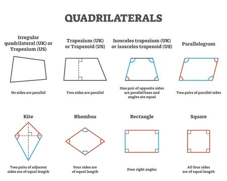 Quadrilaterals vector illustration. Labeled four sides geometrical ornaments with titles collection. Scheme with difference explanation in square, rectangle, rhombus, kite, parallelogram and others. 向量圖像