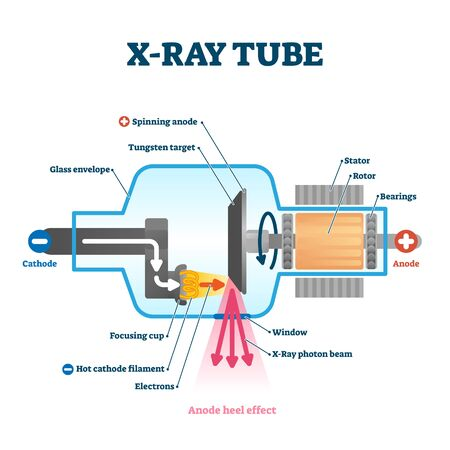 X ray tube vector illustration. Radiology scan equipment structural scheme. Healthcare method for transparent body, luggage or CT. Inside parts and process explanation with cathode and anode method.