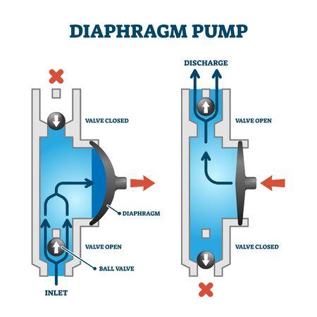 Exemple de processus de fonctionnement d'une pompe à membrane ou à membrane, dessin de schéma technique avec principe d'écoulement de fluide. Comment cela fonctionne étiqueté illustration vectorielle d'exemple visuel. Coupe transversale avec chambre à eau.