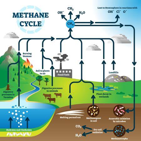 Methankreislaufdiagramm, Vektorillustrationsschema für den globalen Verschmutzungsprozess. Verbrennung fossiler Brennstoffe, Deponien, Pflanzenzerfall in Feuchtgebieten, schmelzender Permafrost, Verdauungsprozesse bei Termiten und Tieren.