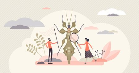 Entomology field concept, flat tiny person entomologists illustration. Catching insects and gathering closeup data. Research work for agriculture, biology and molecular science industries. Ilustrace