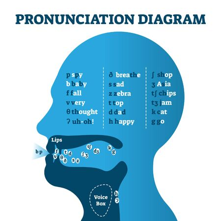 Pronunciation diagram chart with letters and corresponding sounds, vector illustration educational info graphic. Mouth cavity with lips and tongue correct positions example drawing for speech learning Ilustração