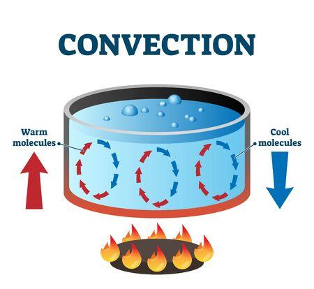 Diagrama etiquetado de la ilustración del vector de las corrientes de convección. Esquema de ciclo de movimiento de energía de moléculas cálidas y frías. Ejemplo con una estufa de fuego y una olla de agua. Transferencia de calor por convección de sustancia líquida.