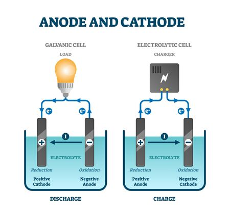 Anode and cathode scientific physics education diagram, vector illustration labeled scheme. Circuit examples with positive and negative oxidation and reduction. Chemical process in electrolyte fluid.