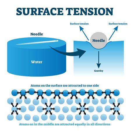 Oberflächenspannung Erklärung Vektor-Illustrationsdiagramm. Physikunterrichts-Informationsschema mit Nadel- und flüssigen Wasseratomen am Beispiel der Oberflächenanziehung. Illustrierte Studienführerzeichnung.