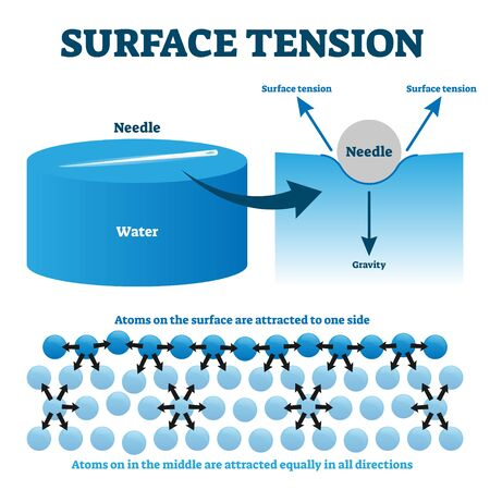 Surface tension explanation vector illustration diagram. Physics educational information scheme with needle and liquid water atoms on the surface attraction example. Illustrated study guide drawing.