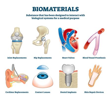 Biomaterials vector illustration. Labeled organ replacement collection set. Medical substance for biological systems interaction in healthcare. Replacements, valves and implants models technology.