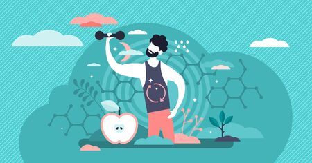 Male metabolism vector illustration. Food to energy process flat tiny persons concept. Nutrition chemical reactions in organism synthesis. Abstract man digestive tract and biochemistry food process.