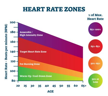 Heart rate zones vector illustration. Pulse intensity educational scheme with labeled BPM and age axis.