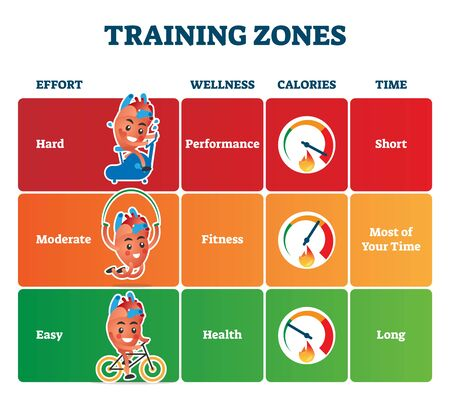 Training zones vector illustration. Labeled healthy sport exercise advice.  イラスト・ベクター素材