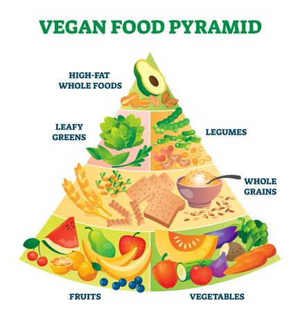 Vegan food pyramid vector illustration. Healthy vegetarian eating scheme. Labeled advice for raw products balance and portion. Vitamins and nutrition control diagram with flesh plants only based diet.