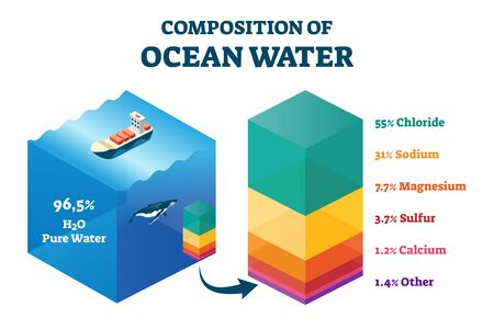 Composition of ocean water vector illustration. Labeled structural educational scheme with cross section percentage graphic. Sea liquid mixture chemical description with chloride, sodium and magnesium
