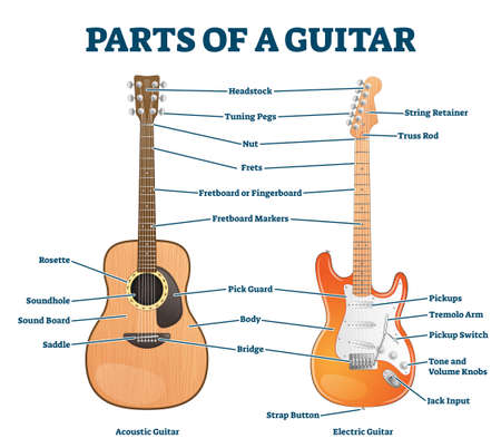 Parts of acoustic and electric guitar labeled structure vector illustration. Educational instrument detailed anatomy description for beginners. Scheme with frets, headstock, fingerboard and bridge. Illustration