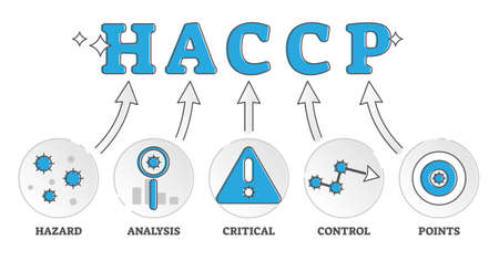 HACCP labeled food control standard explained meaning outline diagram concept. Ingredients preventive safety and sanitary minimum system for catering establishments and restaurants vector illustration Illusztráció