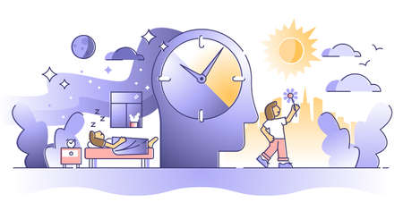 Daytime cycle with day and night daily time loop and routine outline concept. Sleep and awake process graphic with watch and mental inner clock for relaxation and lifestyle control vector illustration Vektorové ilustrace