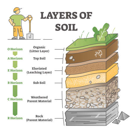 Layers of soil diagram as educational labeled earth structure outline concept Vector Illustration